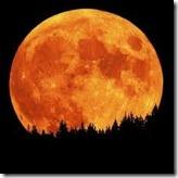 full moon crazy