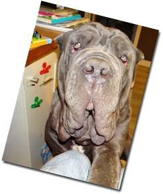 Zeus-loves-me