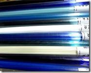 blue-stringers