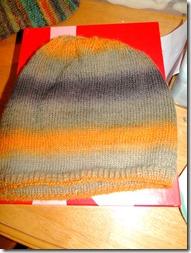 Mason's-hat