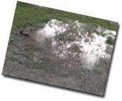 water bubbling from ground