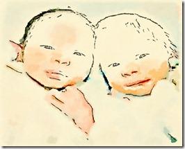 twins-wl