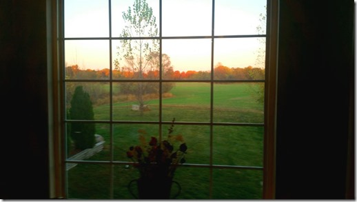 my-fall-view