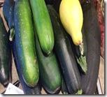 zucchini-2016