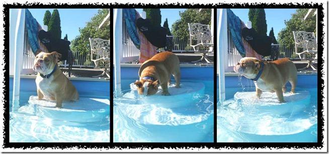 chloe-pool