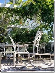 pool-deck-with-flowering-vi