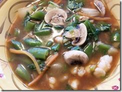shrimp-wonton-soup