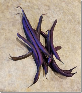 purple-beans