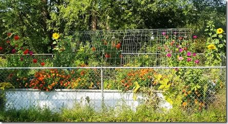 Sept-garden